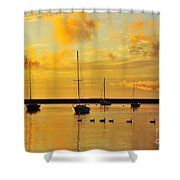 Pure Michigan Gold Shower Curtain