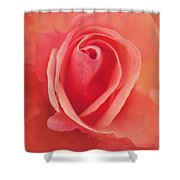 Pure Passion Rose Shower Curtain