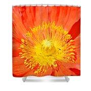 Pure Poppy Sunshine Shower Curtain