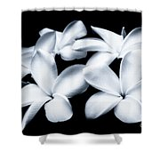 Pure White Large Canvas Art, Canvas Print, Large Art, Large Wall Decor, Home Decor, Photography Shower Curtain