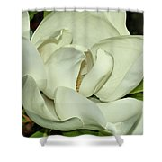 Pure White Fragrant Beauty Shower Curtain