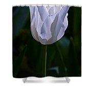 Pure White Petals Shower Curtain