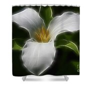 Pure White Trillium Shower Curtain