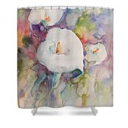 Purete 01 Shower Curtain