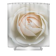 Purity Shower Curtain