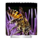 Purpel Nectar Shower Curtain
