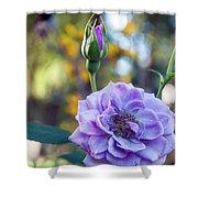 Purple Rose Glow Shower Curtain
