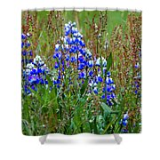 Purple And Grass Shower Curtain
