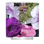 Purple And Pink Petunias Oil Painting Shower Curtain
