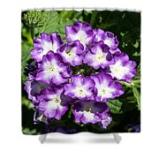 Purple And White Bouquet Shower Curtain