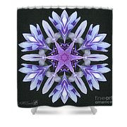 Purple And White Frosted Queen Mandala Shower Curtain