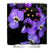 Purple Arctic Wild Flowers Shower Curtain