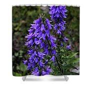 Purple Bell Flowers Shower Curtain