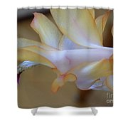 Purple Bell Shower Curtain