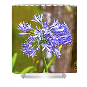Purple Bells And Blossoms Shower Curtain