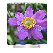 Purple Blossom 1 Shower Curtain