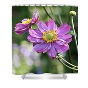 Purple Blossoms 2 Shower Curtain