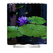 Purple Blue  Lily Shower Curtain