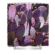Purple Cacti Shower Curtain