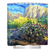 Purple Cactus With Yellow Flower Shower Curtain