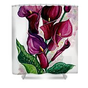 Purple Callas Shower Curtain