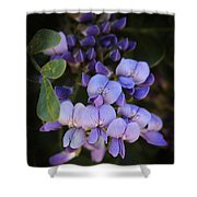 Purple Cascading Floral Art Shower Curtain