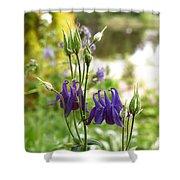 Purple Columbines Shower Curtain