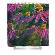 Purple Cone Flowers Outside Beye School Shower Curtain