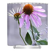 Purple Cornflowers Shower Curtain