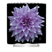 Purple Dahlia Cutout Shower Curtain