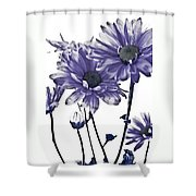Purple Daisies Shower Curtain