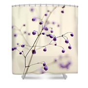 Purple Droplets Shower Curtain