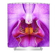 Purple Face In The Orchid. Shower Curtain