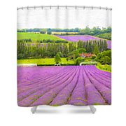 Purple Fields Of Love Shower Curtain