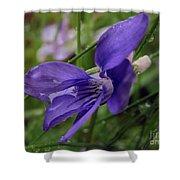 Purple Flower 2 Shower Curtain