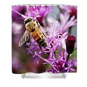 Purple Flower Bee Shower Curtain
