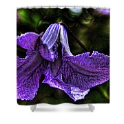 Purple Flower II Shower Curtain