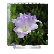 Purple Flower Painting Shower Curtain