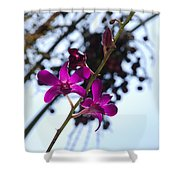 Purple Flowers In The Sky Shower Curtain