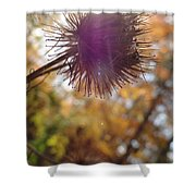 Purple Fuzzy Shower Curtain