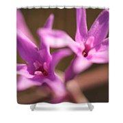 Purple Garlic Shower Curtain