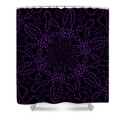 Purple Geek Kaleidoscope Four Shower Curtain