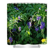 Purple Hanging Flowers Shower Curtain
