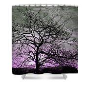 Purple Haze Across The Sky Shower Curtain