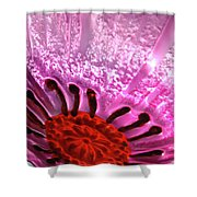 Purple Haze Shower Curtain
