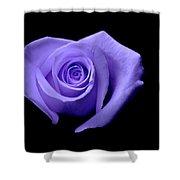 Purple Heart-shaped Rose Shower Curtain