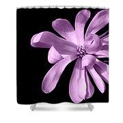 Purple Magnolia Shower Curtain
