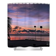 Purple Martin Sky Shower Curtain
