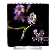 Purple On Black Shower Curtain
