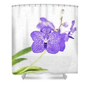 Purple Orchid Bloom Shower Curtain